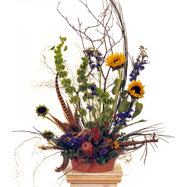 Natural Sympathy Arrangement