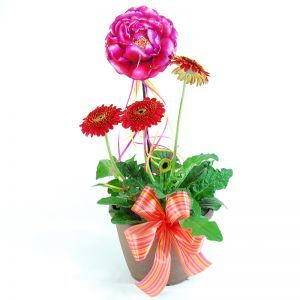 Decorated Gerbera Pots